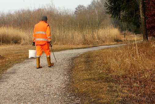Environment, Environmental Protection, Work, Cleaning