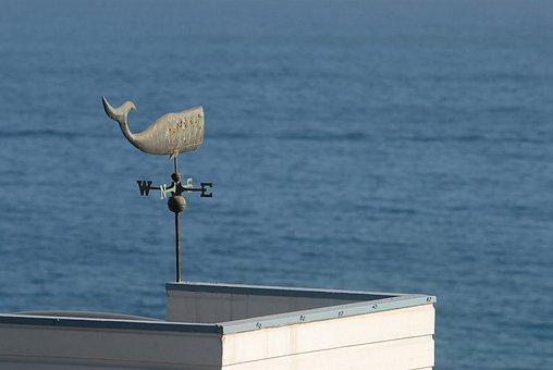 Weathercock, Windvane, Wind, Forecast, Indicator