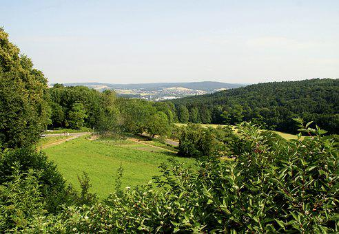 Meadow, Forest, Hiking, Nature, Eifel, Distant View