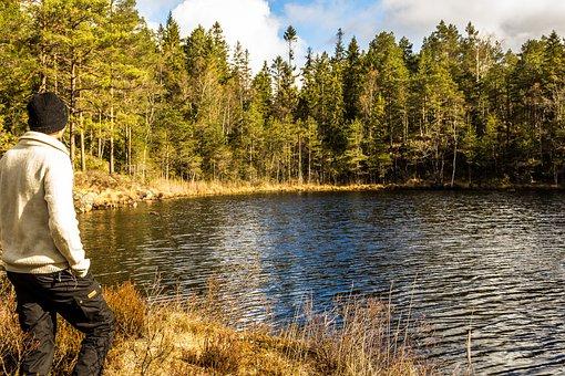 Mann, Innsjø, Skog, Lue, Natur, Norge, Tre, Vann, Våren