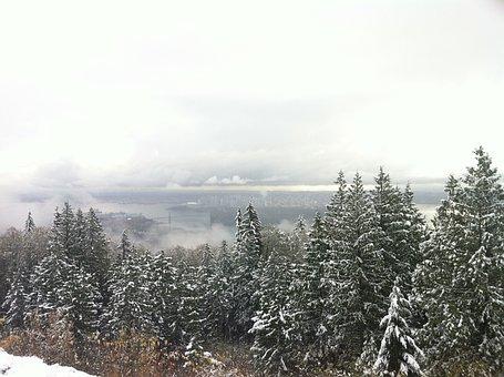 Vancouver, Snow, Fog, Winter, Trees, Cloud, Scenery