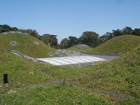 California Academy Of Sciences, Green Roof