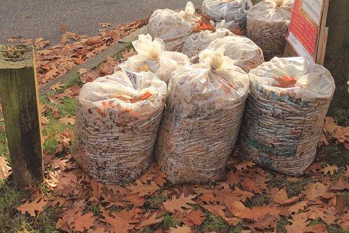 Leaves, Leaf Bag, Autumn, Garbage, Disposal
