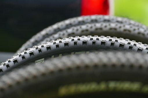 Mature, Profile, Mountain Bike, Bike, Wheel, Cycling