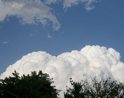 Cloud, Large, White, Dense, Cumulus, Trees, Sky, Blue