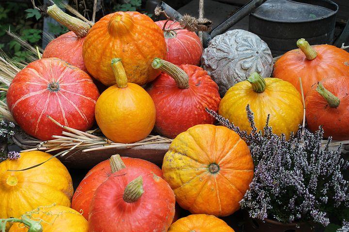 Pumpkins, Autumn, Decoration, Orange, Yellow, Garden