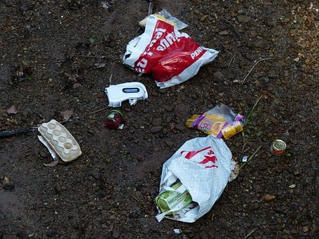 Garbage, Forest, Pollution, Nature, Dirt, Dirty