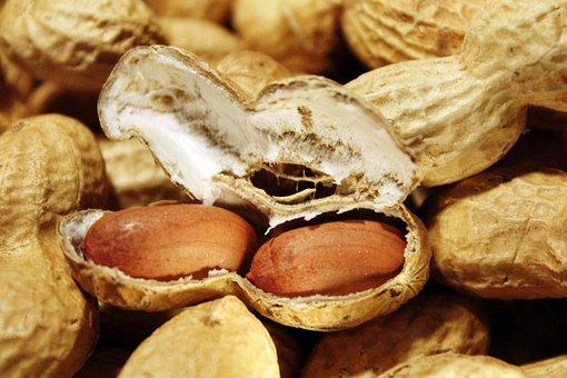 Peanuts, Nuts, Snack, Nutrition, Healthy, Nibble