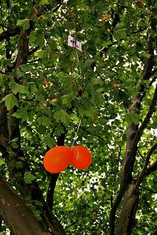 Stuck, Air Balloon Competition, Orange, Balloons
