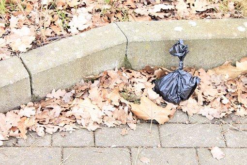 Sanitary Bags, Plastic Bag, Kot Bag, Plastic, Garbage