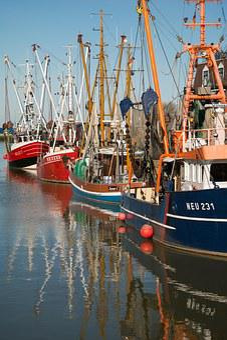 Boats, Port, Ship, Fishing Boats, Mast, Mirroring, Sea