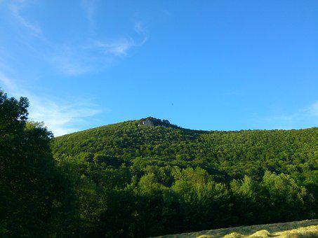 Forest, Swabian Alb, Highlands, Nature