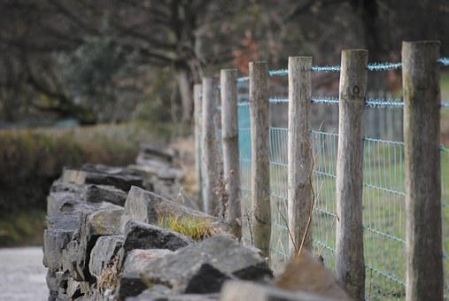 Fence, Wall, Wire, Wood, Texture, Timber, Material