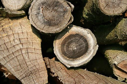Wood, Firewood, Storage, Combs Thread Cutting