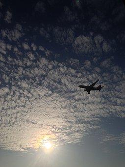 Plane, Aviation, Tbilisi, Airline, Airport, Blue, Pilot