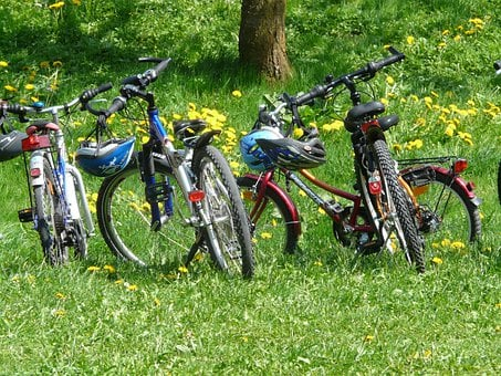 Bicycles, Bike, Family Outing, Bike Ride, Cycle