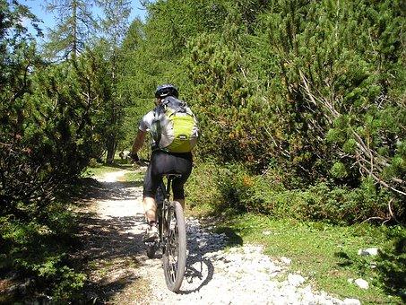 Mountain Bike, Bike, Transalp, Professional Cyclist