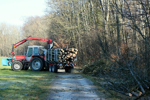 Tractor, Tractors, Forest, Log Trailer, Wood