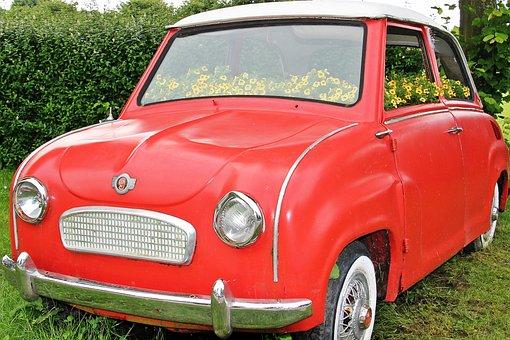 Auto, Flowers Bumper, Planted Car, Planted, Red, Goggo