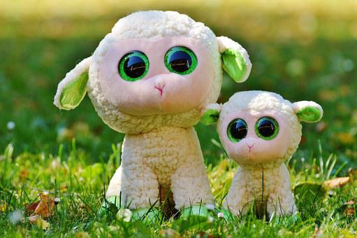 Sheep, Schäfchen, Animal, Nature, Lamb, Cute, Sweet