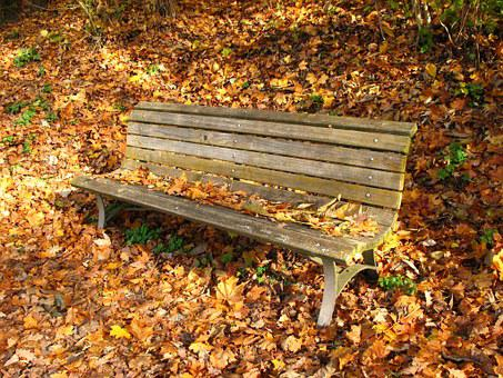 Bank In The Autumn, Fall Leaves, Lone Bank, Loneliness