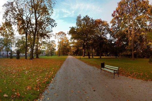 Autumn, Park, Tree, Foliage, Bench, Nature, October