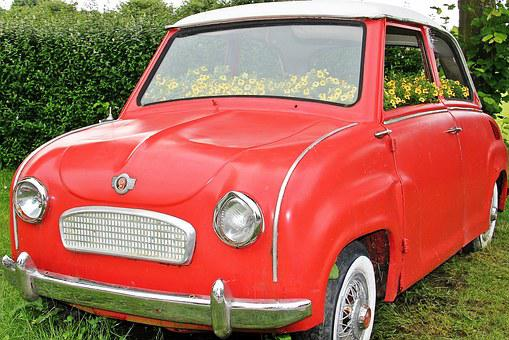 Auto, Flowers Bumper, Planted Car, Planted, Red, Goggo