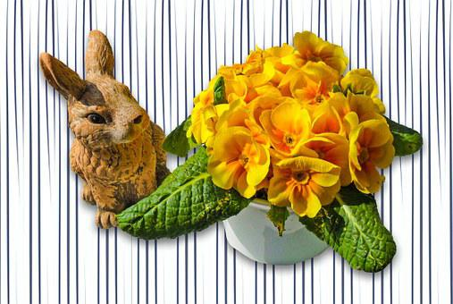 Hare, Animal, Nager, Dwarf Bunny, Sweet, Easter Bunny