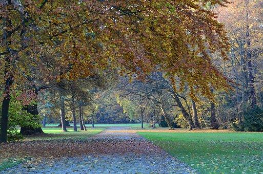 Autumn, Kassel, Karlsaue, Landscape, Nature