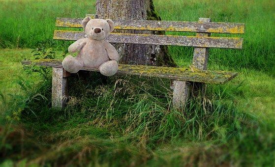 Teddy, Bear, Teddy Bear, Park Bench, Lonely, Forget