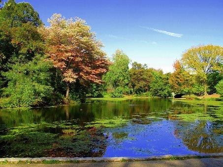Prospect Park, Brooklyn, New York, Park, Landmark, Usa