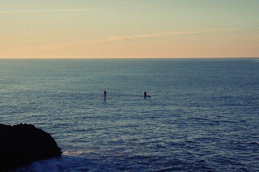Water, Ocean, Sea, Paddle Boarding, Paddle Boarders