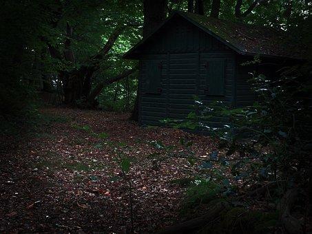 Home, Hut, Forest, Hunting House, Gloomy, Creepy