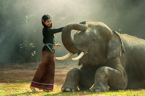 Girl, Africa, Animals, Asia, Cambodia, Friend