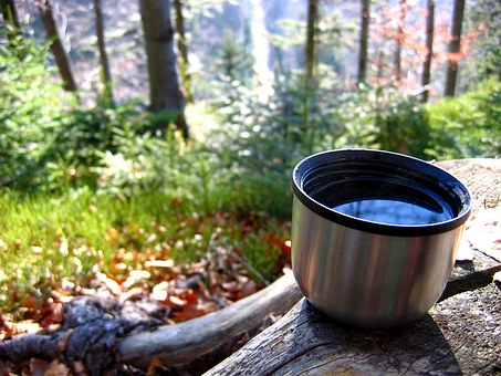 Tea, Mountains, Vacuum Flask, Rest, Forest, Trunk