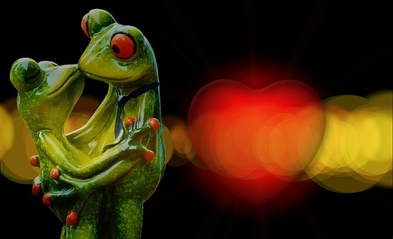 Love, Valentine's Day, Pair, Romance, Together