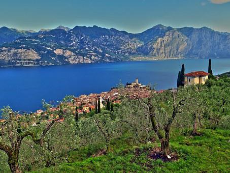 Malcesine, Garda, Mountains, Olive Trees, Panorama