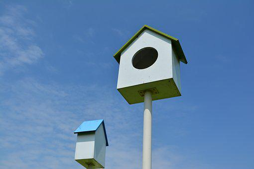 Bird Cage, New Foster Home, Blue Sky, Sky, House