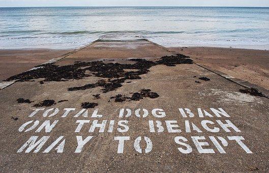 Dog, Ban, Beach, Hygiene, Stop, Prohibit, Prohibition