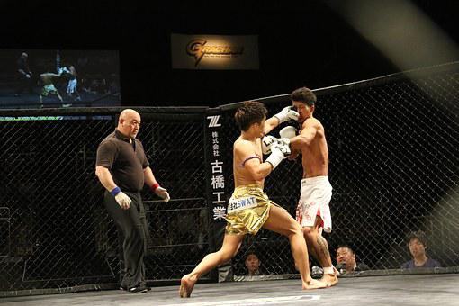 Kickboxing, Boxing, Cage, Maza, Martial Arts, Shooting