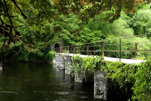 Ireland, County Galway, Cong, River, Bridge