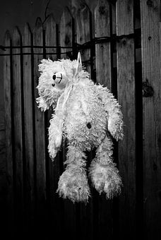 Suicide, Bear Cub, Depressed, Black And White, Hangman