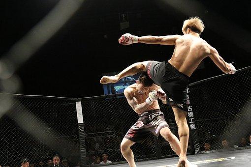 Mixed Martial Arts, Sport, Kick, Shooto, Ring, Japan