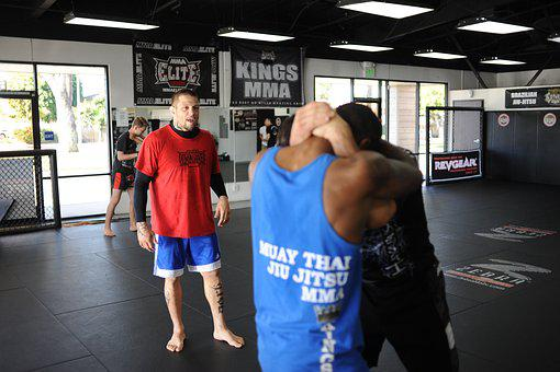 Mma, Bjj, Jiujitsu, Grappling, Kickboxing, Combat
