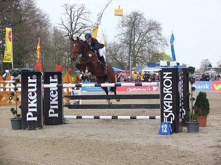 Jump, Obstacle, Jumper, Tournament, Testing