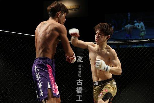 Mma, Grachan, Mixed Martial Arts, Japan, Martial Arts