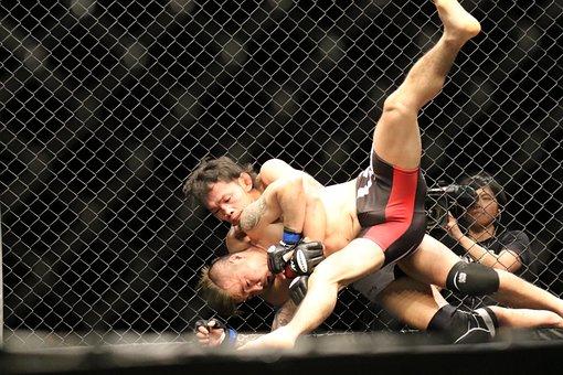 Mma, Mixed Martial Arts, Maza Fight, Maza, Shooto