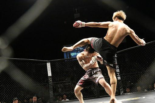 Mixed Martial Arts, Sport, Kick, Shooto, Ring, Japan