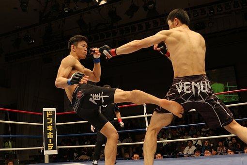 Mma, Mixed Martial Arts, Japan, Maza, Maza Fight