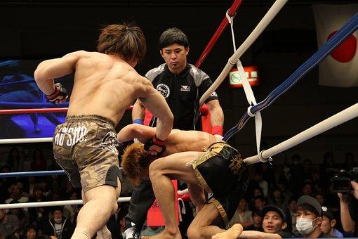 Mma, Mixed Martial Arts, Shooto, Japan, Maza Fight